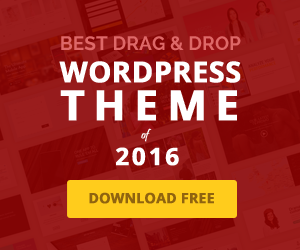 Best Wordpress Theme of 2016